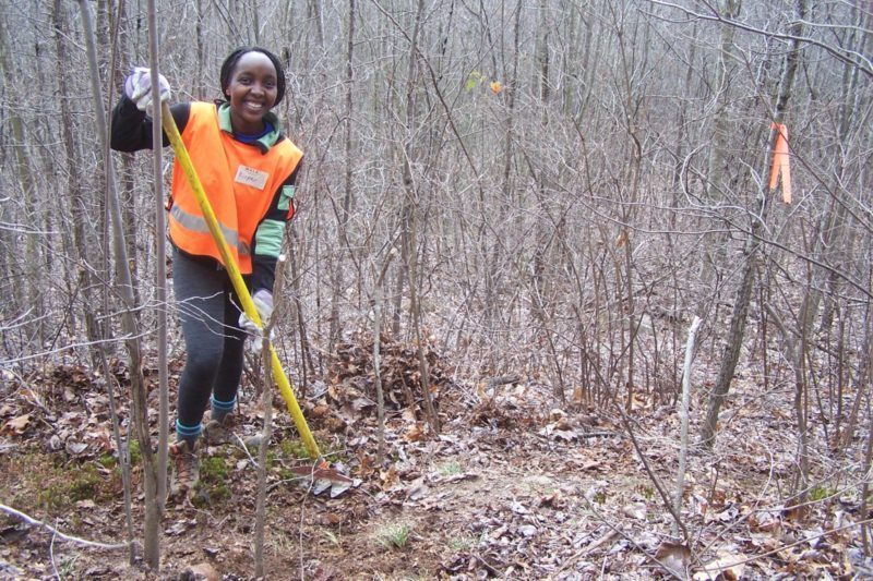 Rispev, a Hamilton College exchange student from Kenya is at the leading edge of cutting raw trail in the Tennessee wilderness.