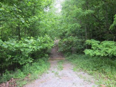 Headed toward Wilson Gap (Sharon Petro)
