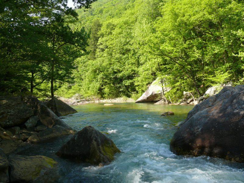 North Chickamauga Creek (Gary Keckley)