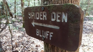 Spider Den Bluff Sign