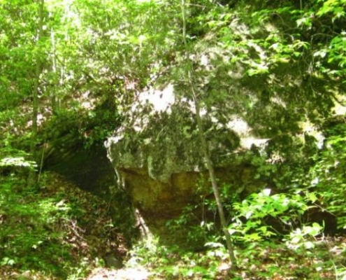 Rock Outcrop along the Cumberland Trail (Sharon Petro)