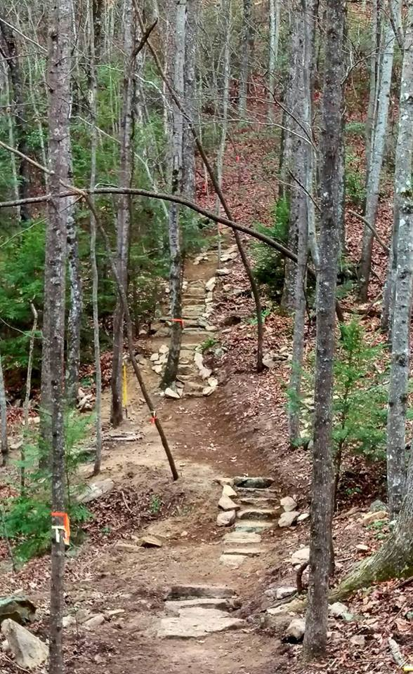 Step work near McGill Creek 2016 (Wilson)