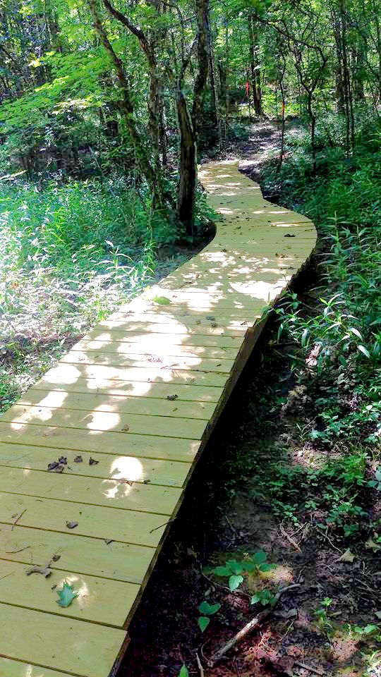 Raised Boardwalk near southern trailhead for Daddys Creek Section off Hebbertsburg Road. (Richie)