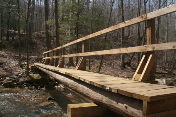 Footbridge over Straight Fork Creek (Bobby Trotter)