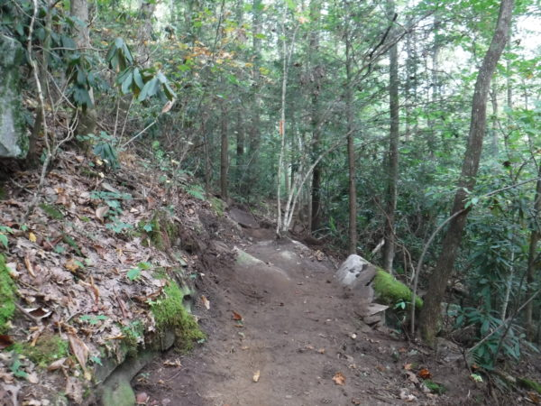 Finished trail on 42 percent side slope above Fall Creek. Ozone Section nears completion October 2019. (Wilson)