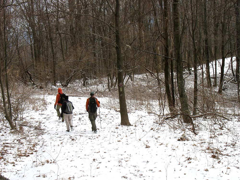 Winter Hike in Frozen Head (Jean Gauger)