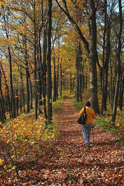 Fall hiking along Lawson Mountain Section (Barbara Stagg)