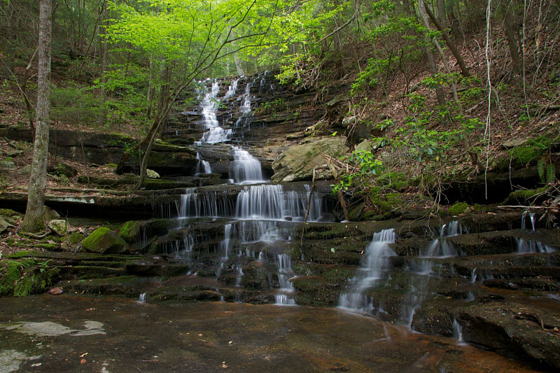 Leggett Branch Cascades (Ron Shrieves)