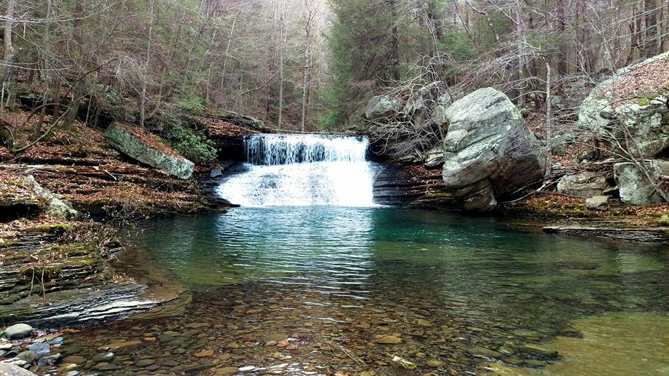 McGill Creek Falls. (Stephens)