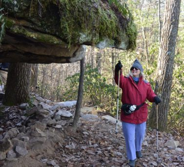 Moss covered rockhouse greets hiker near trailhead on Hebbertsburg Road. Daddy's Creek Section of Crab Orchard Segment