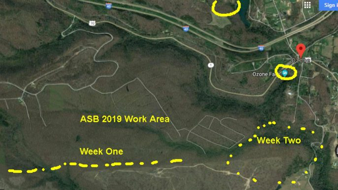 ASB 2019 work area showing week 1 and 2 areas.