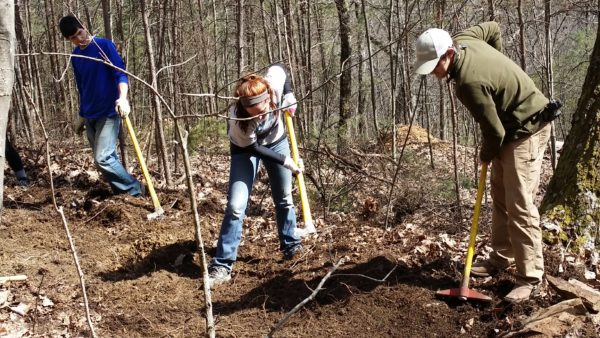 Student volunteers use trail tools like a Maddox and a fire rake to remove organic material and find mineral soil suitable for building a stable trail tread.